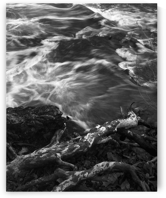 Creek by Victor F Rodriguez Jr