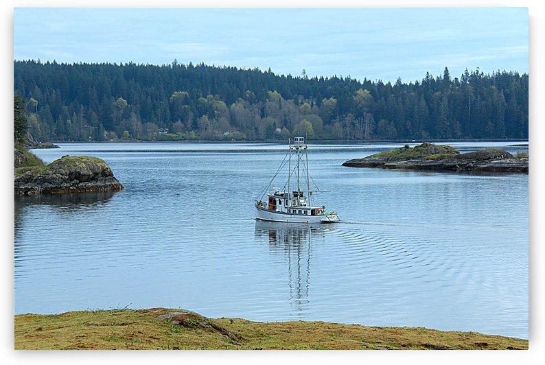 Gowlland Bay, Vancouver Island BC by Vinka Perzina Photography