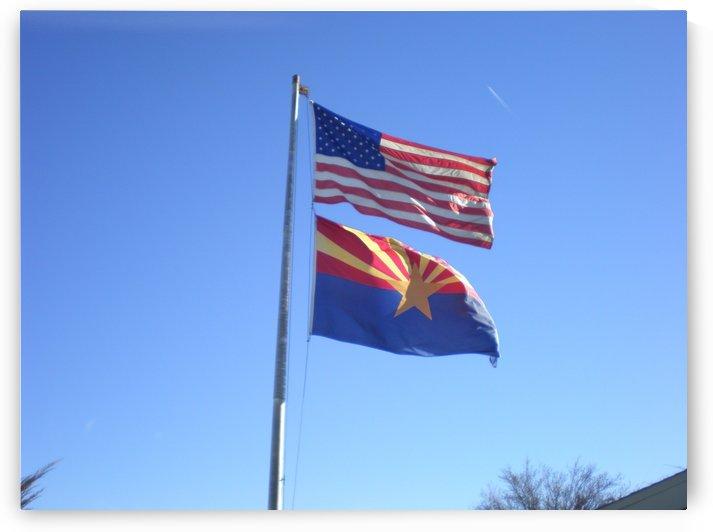 US and Arizona Flag by Debbie-s Photo Korner