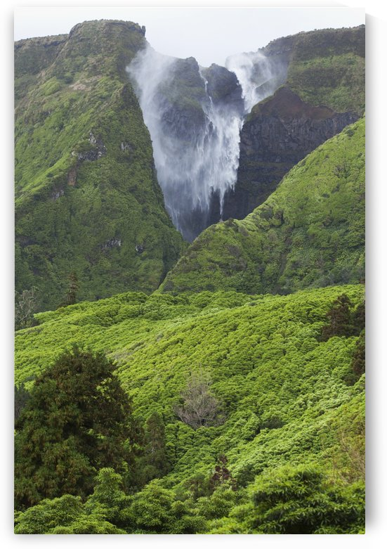 Waterfall on Flores Island; Acores, Portugal by PacificStock