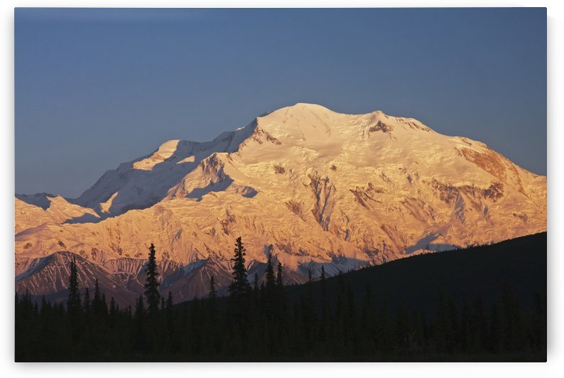 Sunset scenic on Mt. McKinley, Denali National Park, Interior Alaska by PacificStock