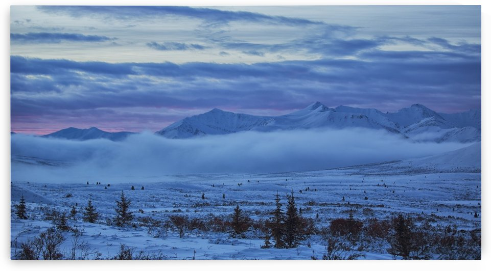 Winter sunrise along the Dempster Highway; Yukon, Canada by PacificStock