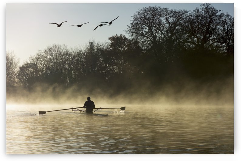 Sculling in mist on River Thames; London, England by PacificStock