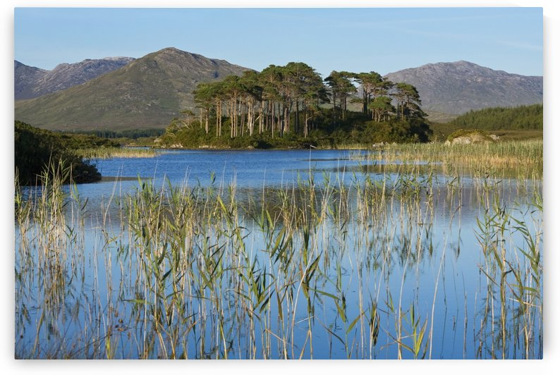 Derryclare Lough; Connemara, County Galway, Ireland by PacificStock