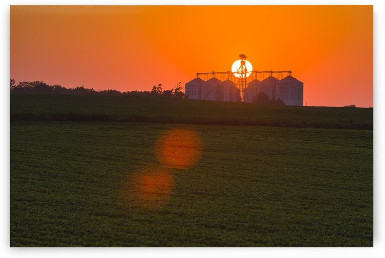 The sun sets behind a large commercial grain storage facility in mid-summer in central Iowa with a green soybean field and green corn field in the foreground; Iowa, United States of America by PacificStock