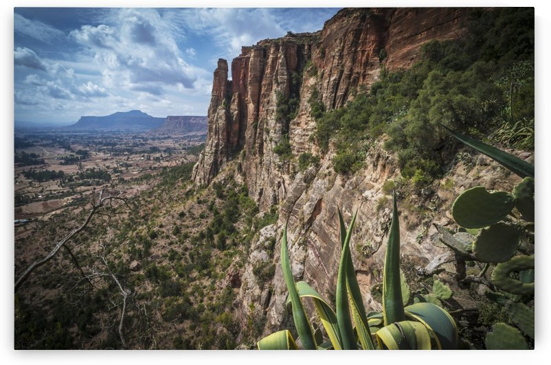 Rugged cliffs and plants on a landscape; Tigray, Ethiopia by PacificStock
