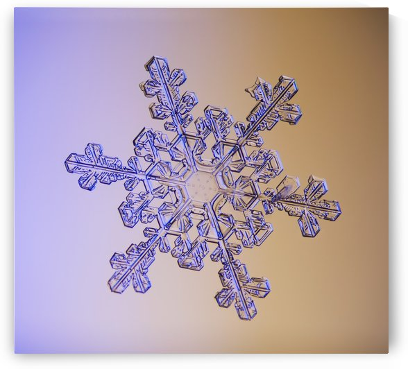 Photomicroscopic close up of a snowflake crystal, Alaska by PacificStock