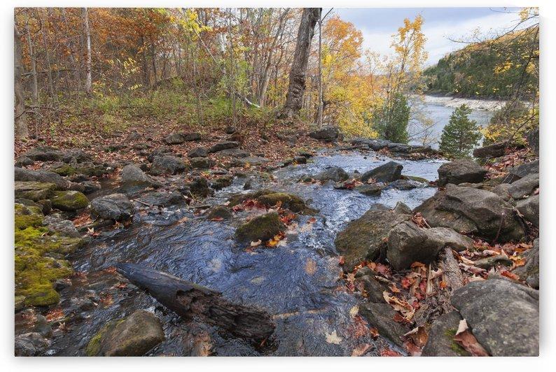 River in autumn; Halton Hills, Ontario, Canada by PacificStock