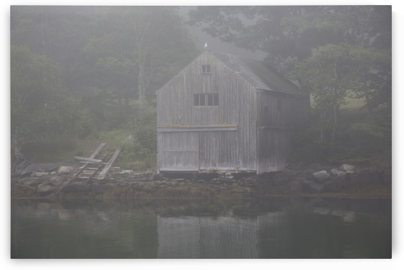 Boathouse in fog; New Harbor, Maine, United States of America by PacificStock