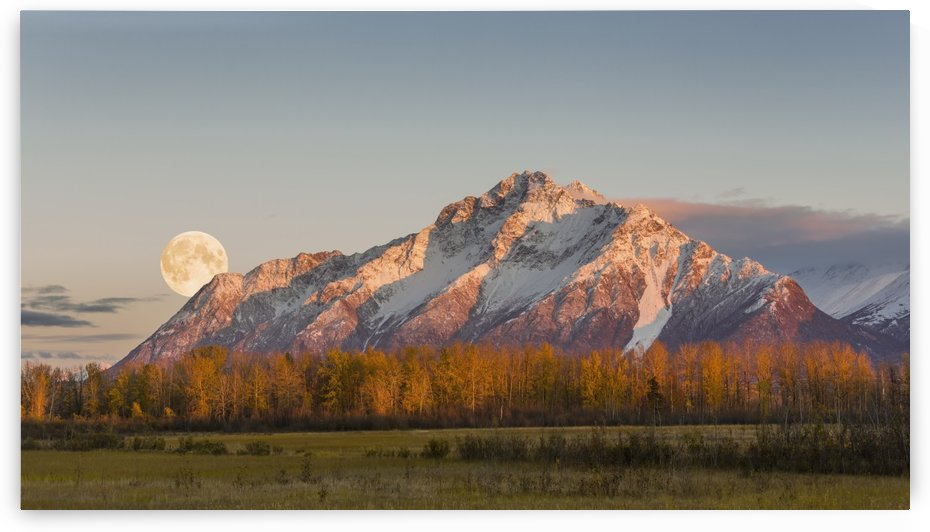 COMPOSITE: Scenic sunset view of Pioneer Peak with the full moon rising over the Palmer Hay Flats, Southcentral Alaska, Autumn. by PacificStock