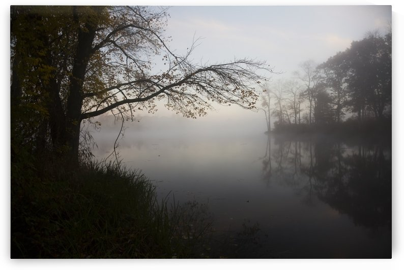 Dawn at pond in autumn; Salem, Connecticut, United States of America by PacificStock