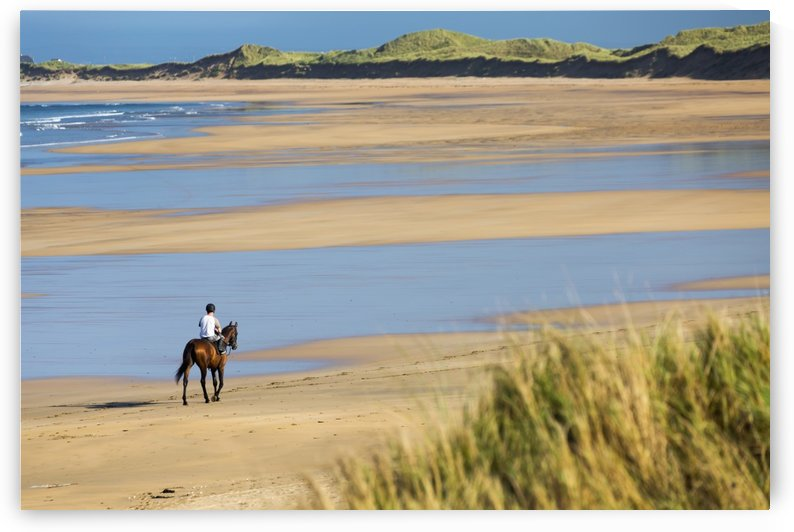 Horse and rider on beach with grassy sand dunes and blue sky; Count Clare, Ireland by PacificStock