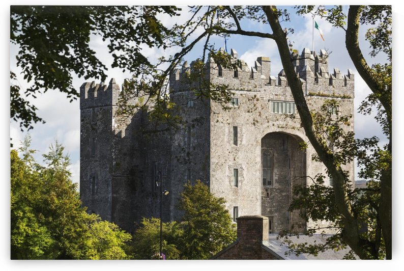 Stone castle framed within trees with clouds and blue sky; Bunratty, County Clare, Ireland by PacificStock