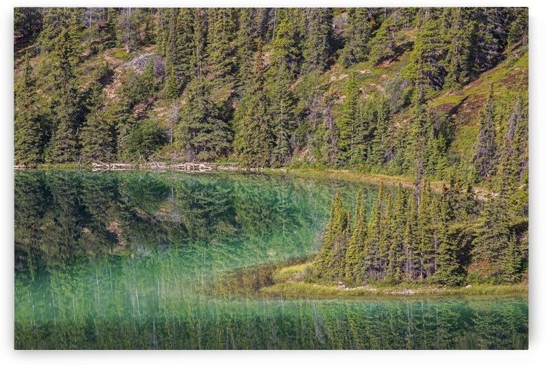 The emerald green waters of Emerald Lake near Carcross; Yukon, Canada by PacificStock