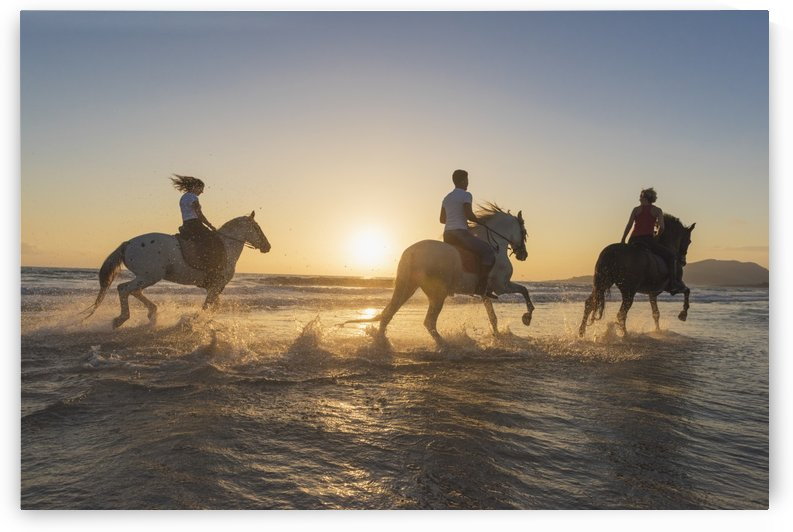 Horseback riding in the shallow water at sunset; Tarifa, Cadiz, Andalusia, Spain by PacificStock
