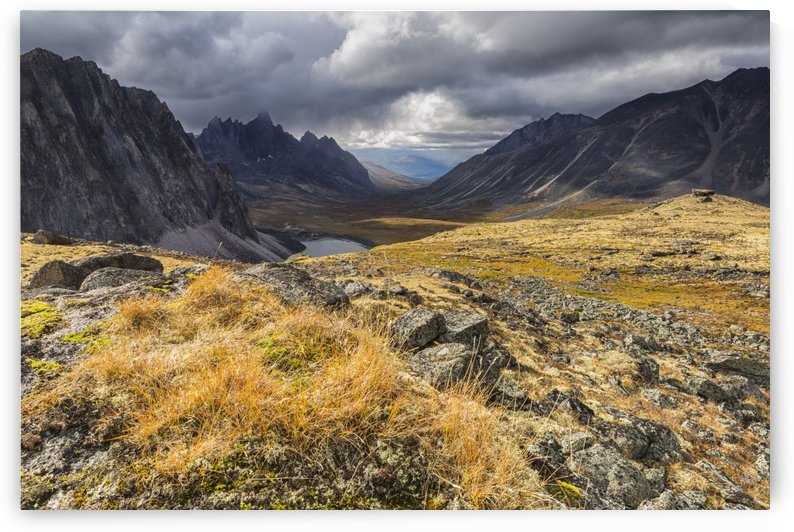 Colorful tundra in autumn in Tombstone Territorial Park; Yukon, Canada by PacificStock