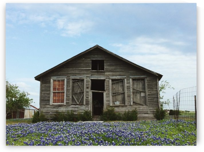 Blue Bonnet Shack by Shane  A Cook