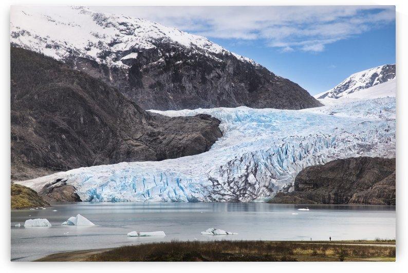 Alaska, Juneau, Mendenhall Glacier and Coast Mountains, Southeast Alaska, Summer by PacificStock