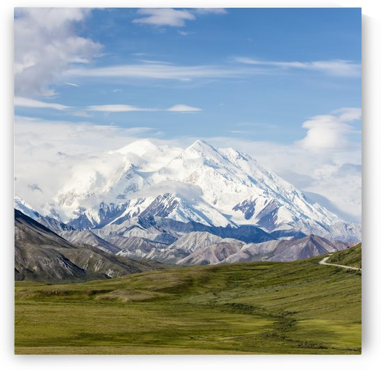 Scenic view of Denali and Thorofare Pass as seen from Stony Hill, Denali National Park, Interior Alaska, Summer by PacificStock