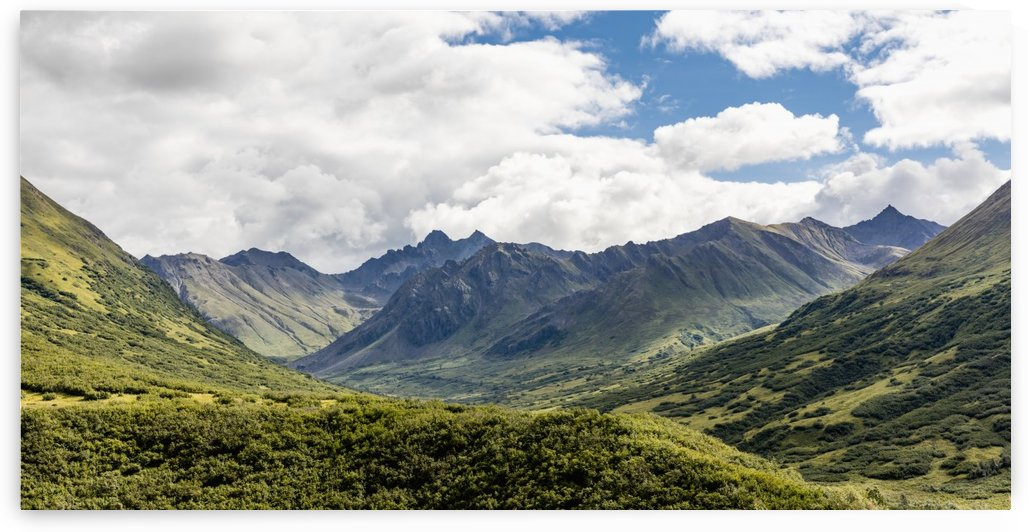 Scenic view of the Talkeetna Mounts and the Mint Glacier Valley at Hatcher Pass, Southcentral Alaska, Summer by PacificStock