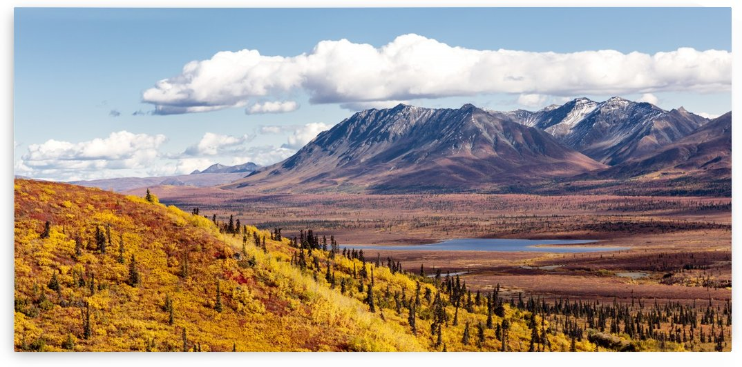 Scenic view of peak fall colors along Matanuska Valley, Southcentral Alaska by PacificStock