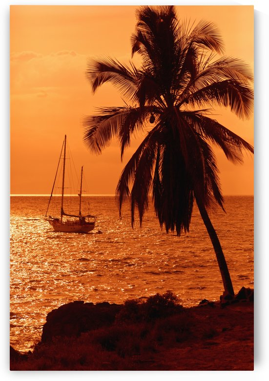 Sailboat and palm tree at sunset; Kihei, Maui, Hawaii, United States of America by PacificStock