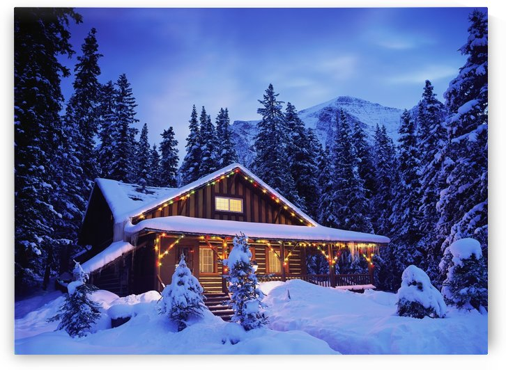 Cabin in the woods illuminated by Christmas lights by PacificStock
