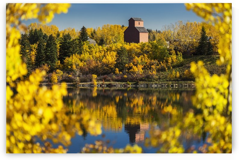 Wooden grain elevator surrounded by colourful trees in autumn reflecting in a lake with blue sky; Calgary, Alberta, Canada by PacificStock