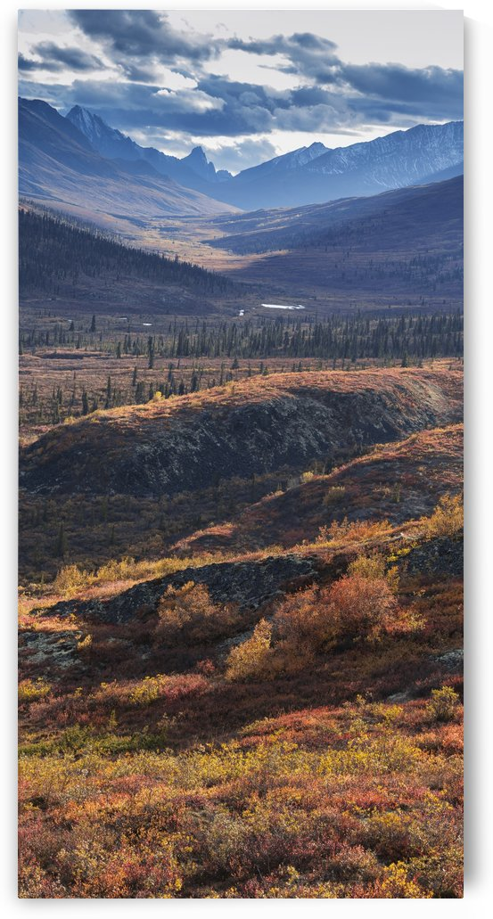 Scenic autumn view of mountains and colorful tundra in Tombstone Territorial Park, Yukon Territory, Canada by PacificStock