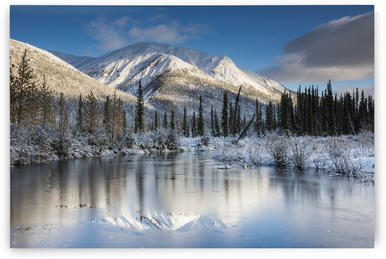 Thin ice on a pond following a fresh snow on mountains in the Brooks Range north of Wiseman, Alaska. by PacificStock