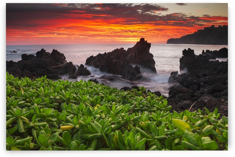 Sunrise over the ocean and coastline; Laupahoehoe, Island of Hawaii, Hawaii, United States of America by PacificStock