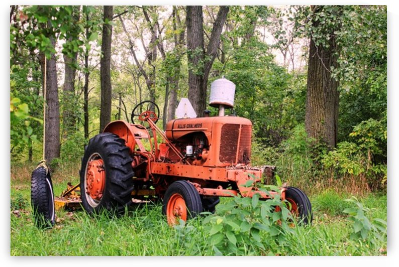Vintage Tractor by Marshall Rounds