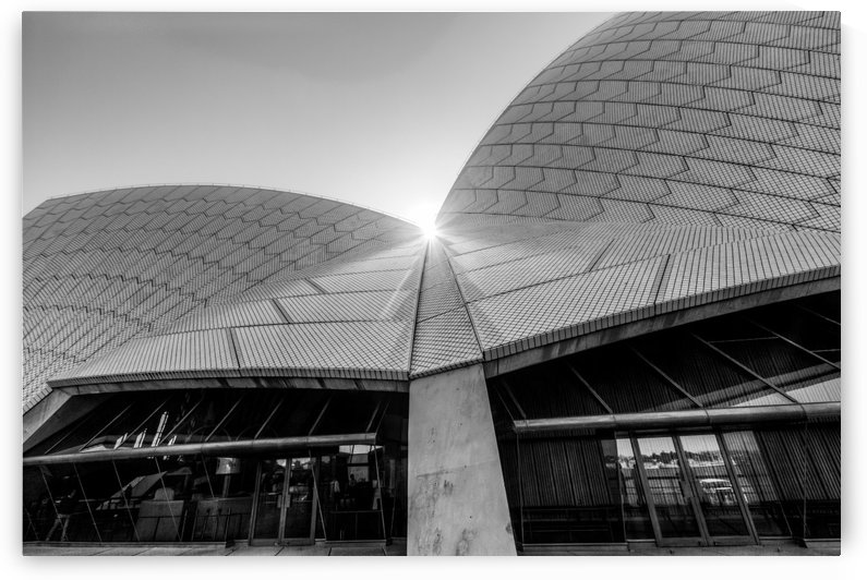 Curves at the Opera House by DLPSquared