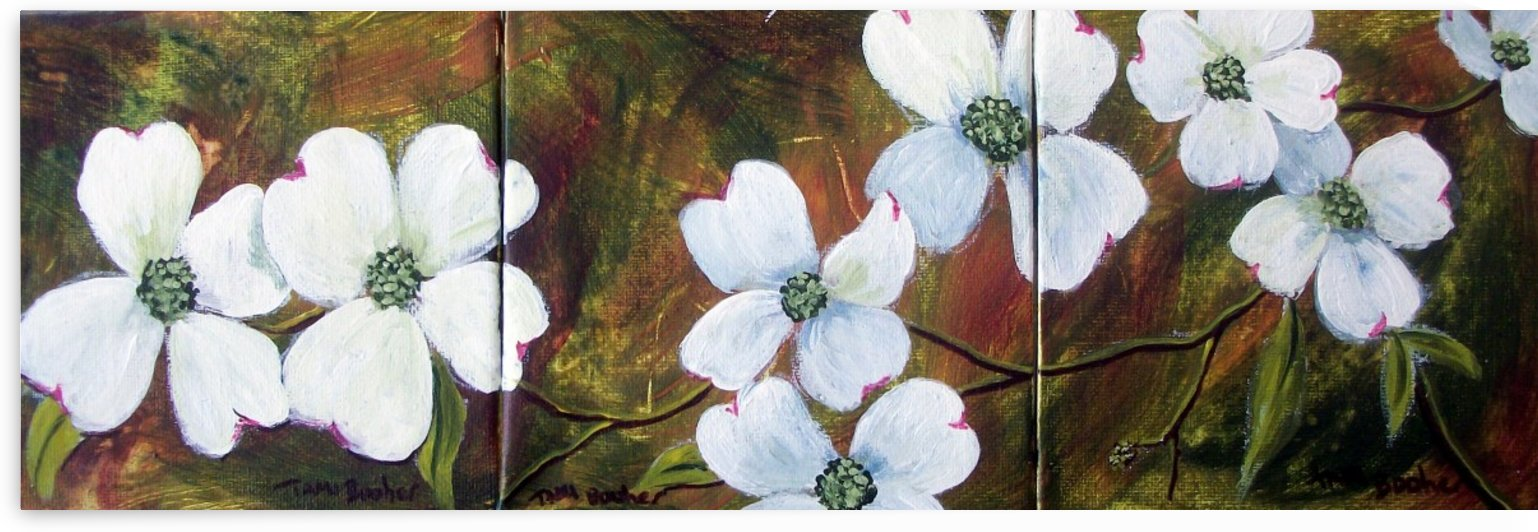 dogwoods by Tami Booher Appalachian Nature Painter