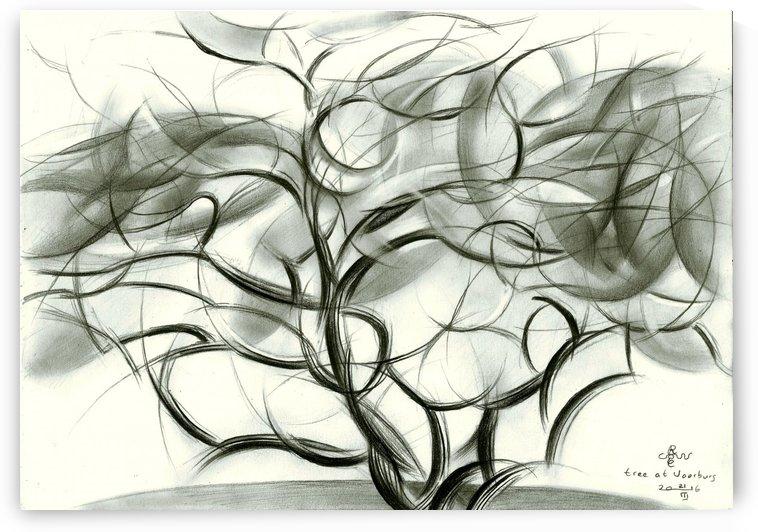 Tree at Voorburg - 21-03-16 by Corné Akkers