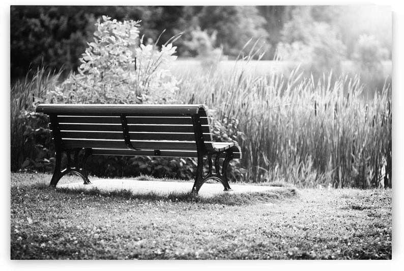 Lonely Bench by Roger Branker