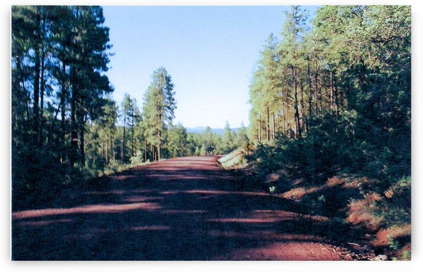 A Road Through by Arizona Photos by Jym