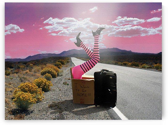 The Journey by Tyler  Hebert