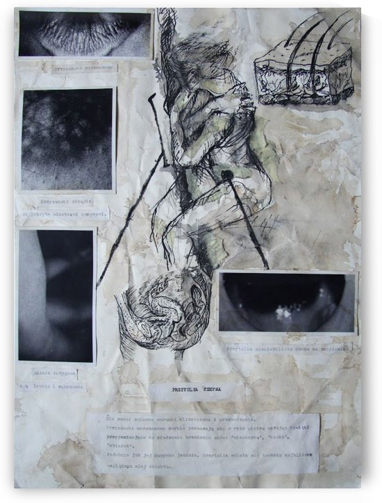 WOMAN PLANT 5 by Marta Kotwica