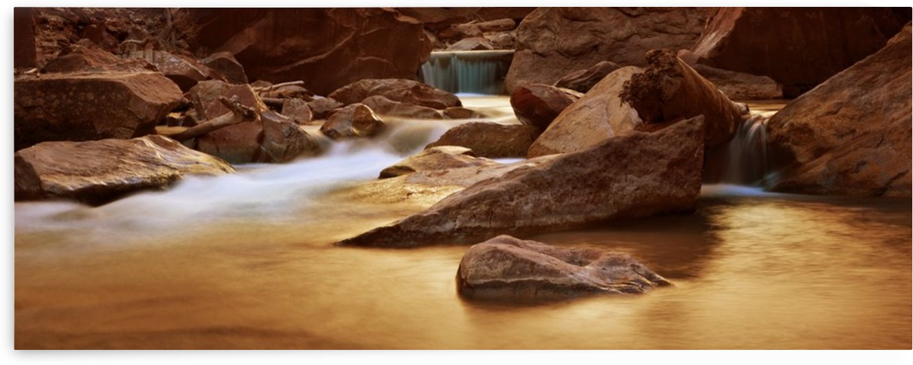 Zion Park River by Christopher Dormoy