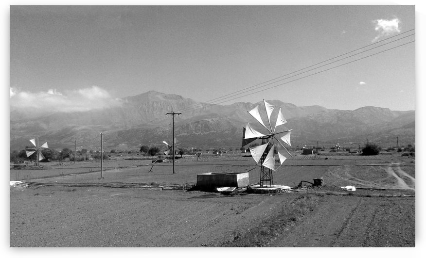 Wind field by Vlad Radulian