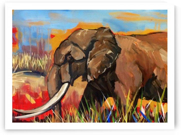 Elephant by Hal Sadler