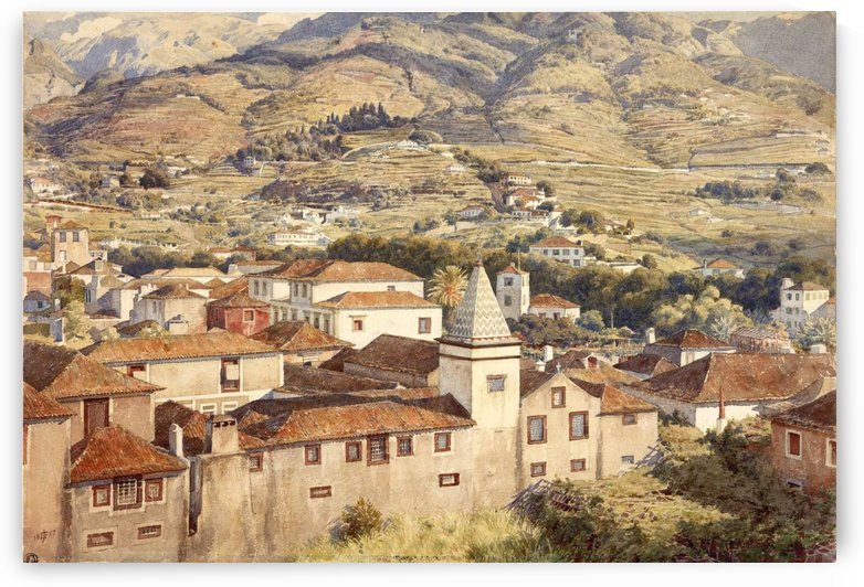 Funchal, Morning Sun by Edward Poynter