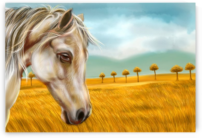 HORSE AT YELLOW PADDY FIELD by ASP Designs