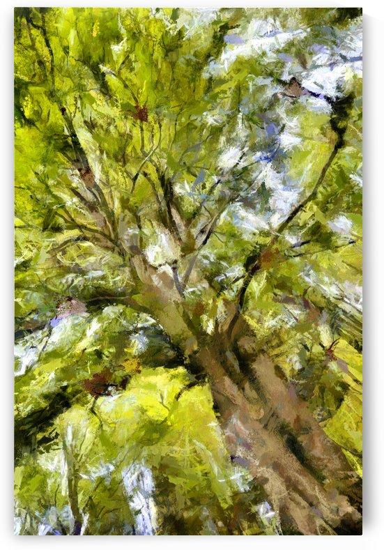 TREE 12 MONET by Jean-Jacques MASSOU