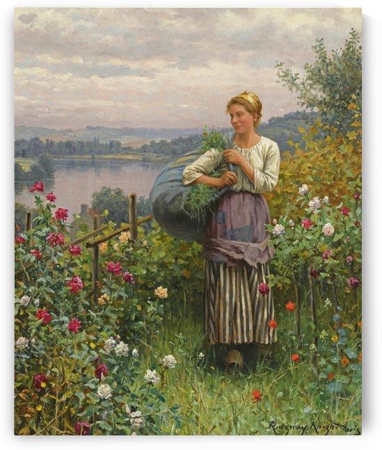 Girl in the garden by Daniel Ridgway Knight
