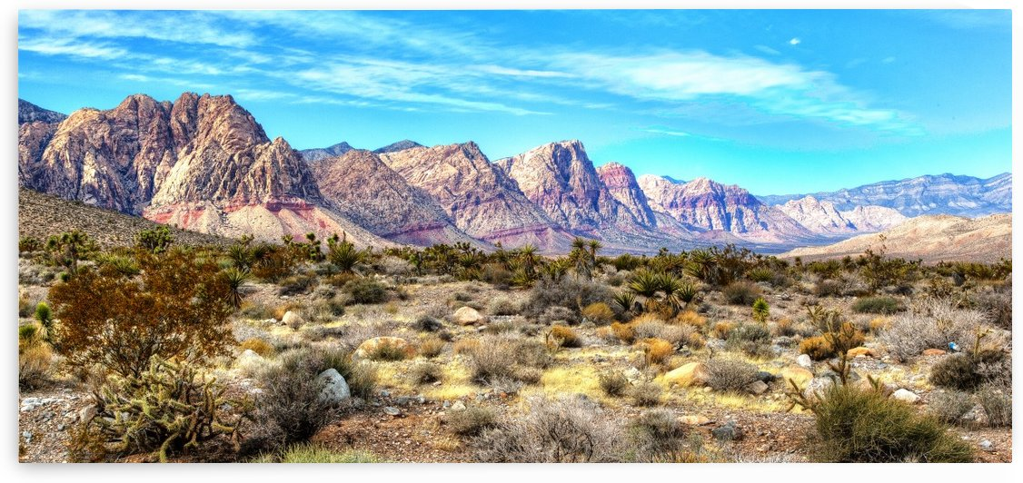 Red Rock Canyon by Michel Nadeau