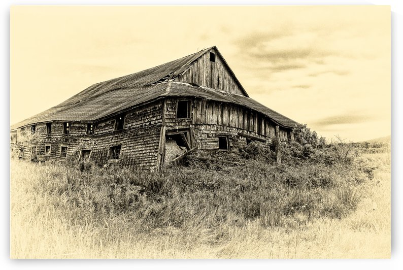 Old Barn by Michel Nadeau