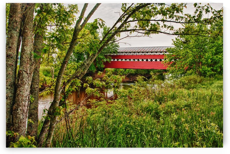 Covered Bridge by Michel Nadeau