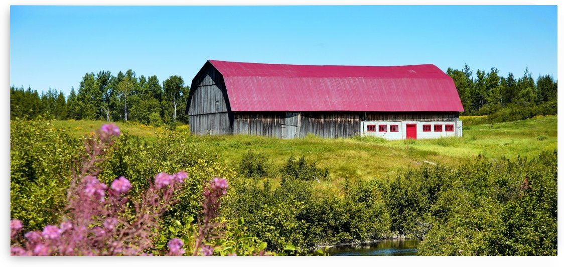 Lac St Jean Barn by Michel Nadeau